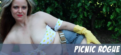 featurebanner_picnicrogue2