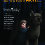 COVER OF PROTECT VOL. 1