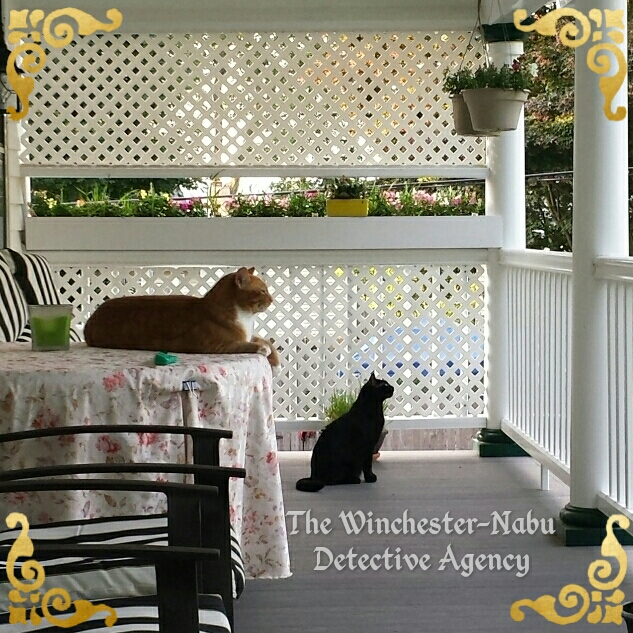 Ollie and Gus Winchester-Nabu Detective Agency 2017-06-19_06.37.12_wm