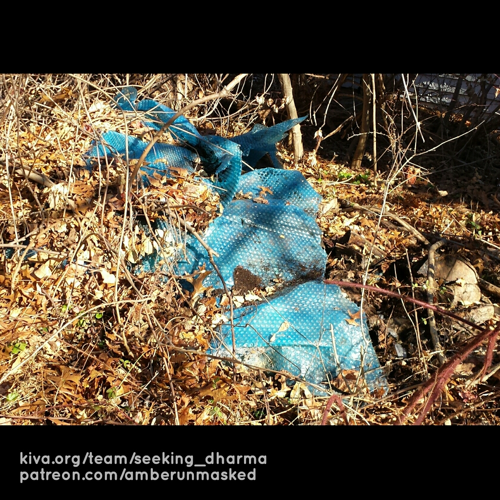 20171221_LitterCleanup (2)