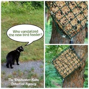 collage of vandalized bird feeder