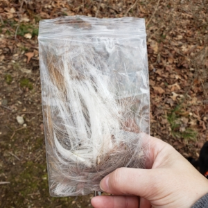 evidence discovered hair/fur in bag