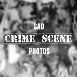 catbird murder Sad Crime Scene photos blurred