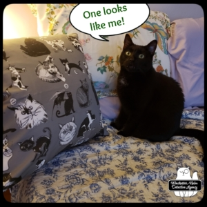 insider art pillow grey with Gus