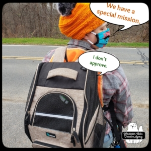Gus in backpack with Amber