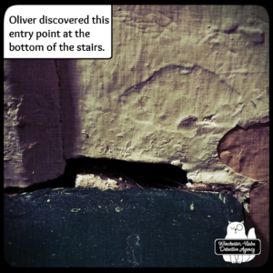 hole in stairs