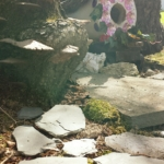 Beltane Fairy House