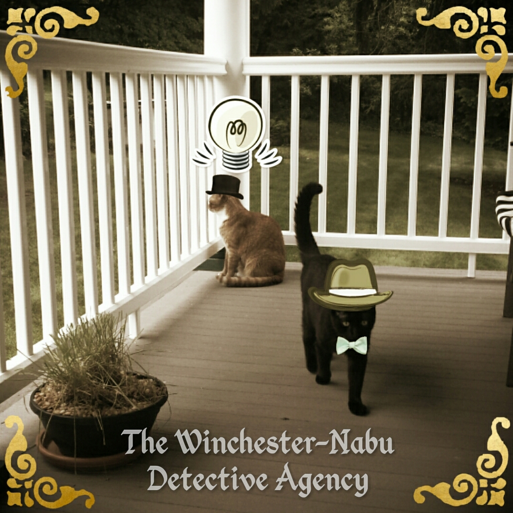2017-07-14 Winchester-Nabu Detective Agency Ollie and Gus