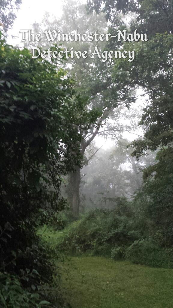 Fog hiking trail 20170914_064839_wm