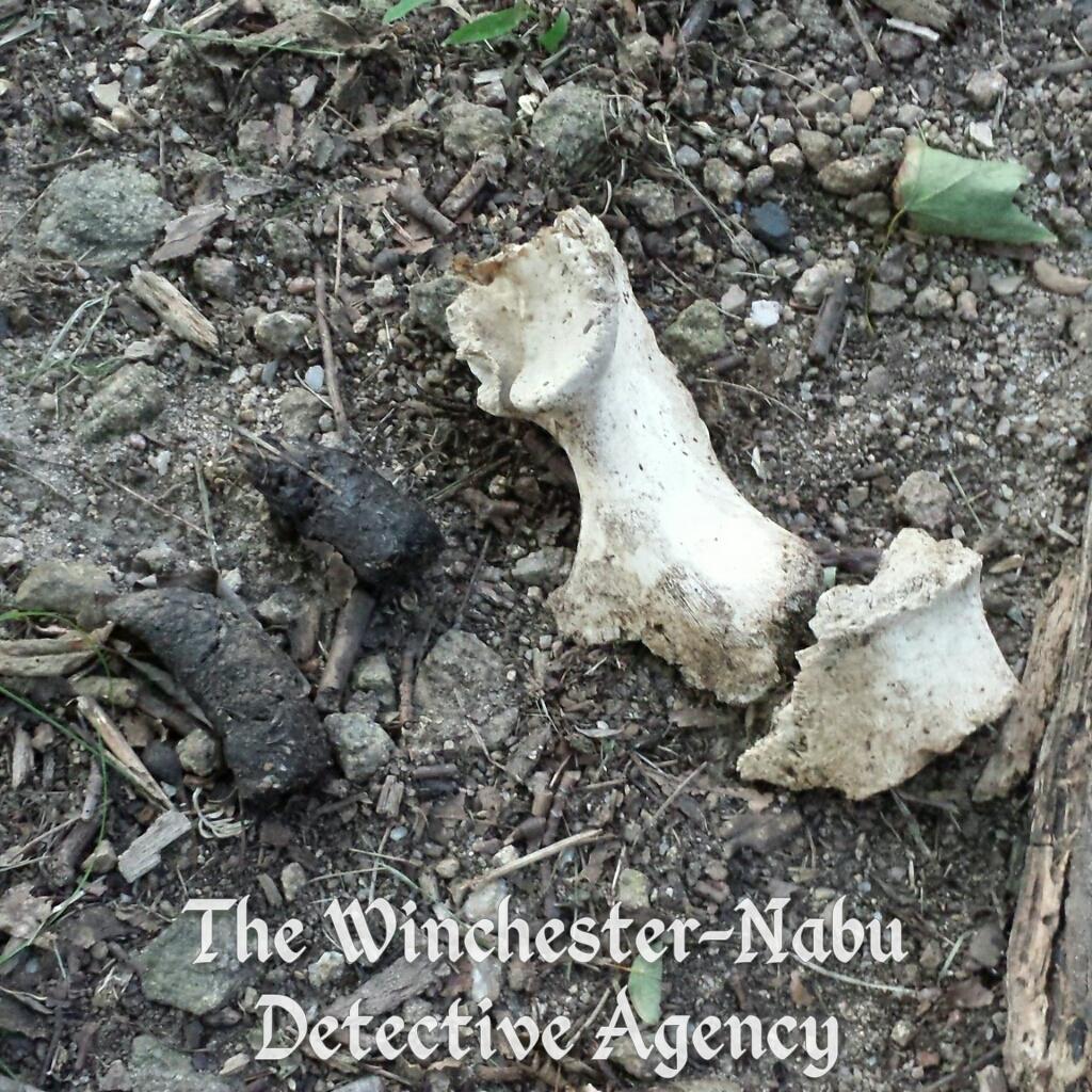bones winchester-nabu