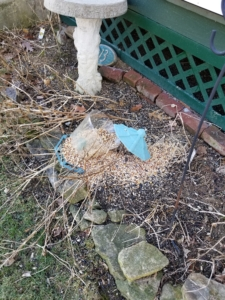 bird feeder smashed