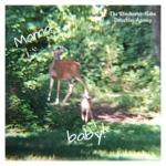 mama deer and baby