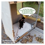leaf catcher panther trap