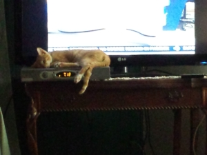 baby Oliver sleeping on cable box