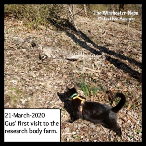 Gus at the body farm