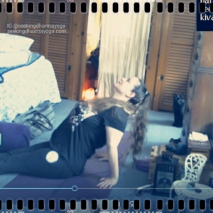 screenshot of cats & Amber during yoga filming