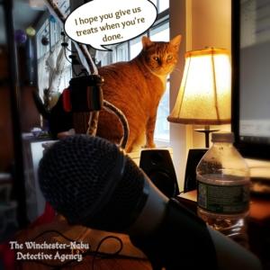 Oliver by podcast setup