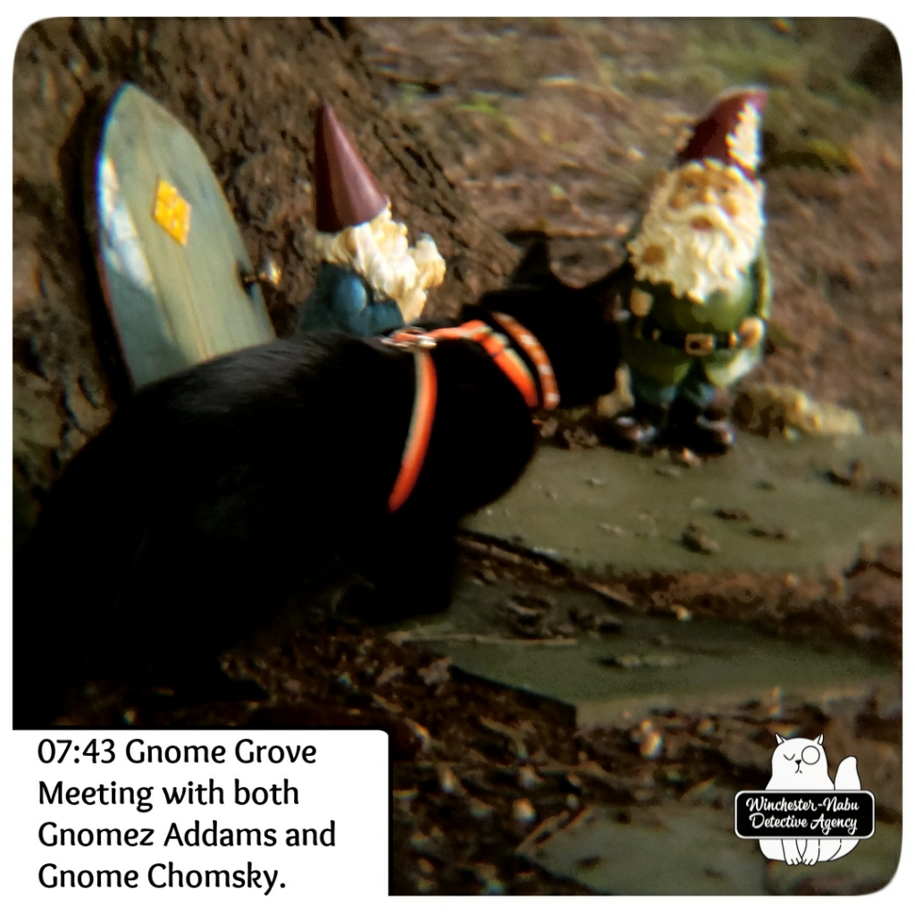 20200912 gnome meeting1