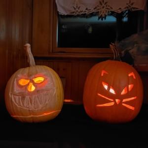 2020 pumpkins