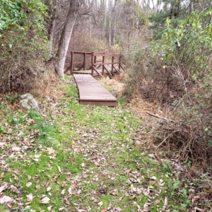 small bridge on trail