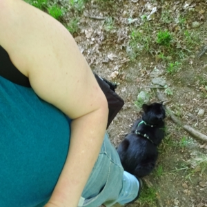 amber and Gus on a trail