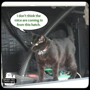 Gus in a hatch of the MCU